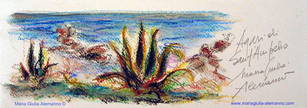 piccole-agavi-di-santampelio-copy21